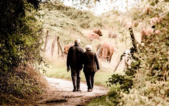 Seniorenpaar  auf dem Weg Richtung Kuhwiese.