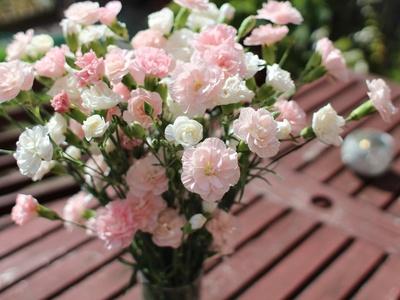 Ein Strauß mit weißen und rosa Nelken