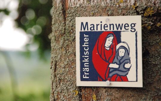 Wegzeichen des Fränkischen Marienwegs an einem Baum