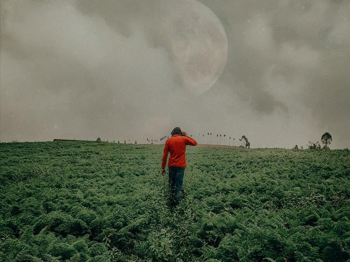 Mann geht über ein bewirtschaftetes Feld.