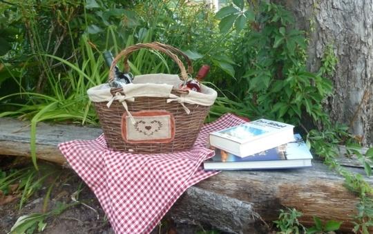 Picknick im Grünen mit Bibel