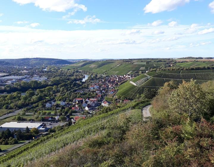Weinort Randersacker
