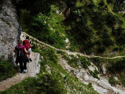 Eine Bergwanderung auf einem schmalen Pfad