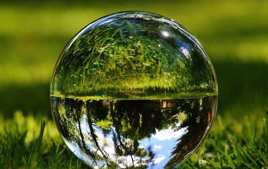 Glaskugel spiegelt die Natur