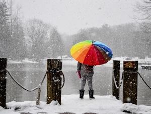 Am See im Winter