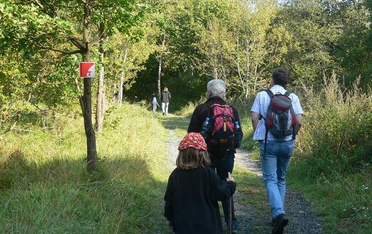 Pilger gehen den Franziskusweg.