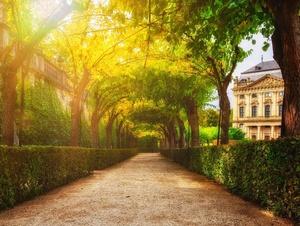 Der Hofgarten im Umfeld der Residenz in Würzburg