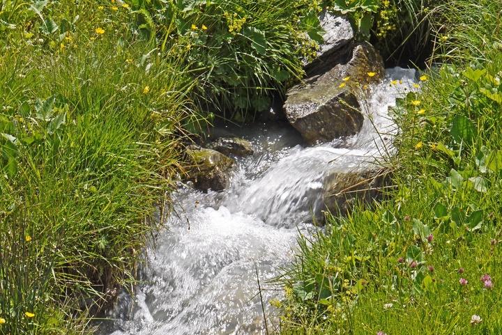 Wasserquelle auf einer Alm