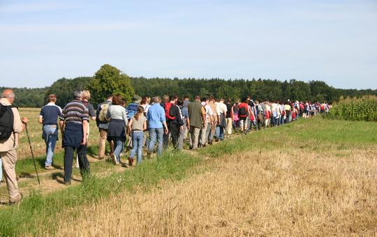 Wallfahrer ziehen an einem Feld vorbei.
