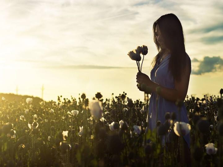 Eine Frau steht in der Abendsonne inmitten der Pflanzen eines Feldes und hält Blumen in den Händen.