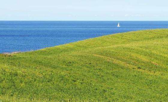 Graslandschaft an Ostseeküste