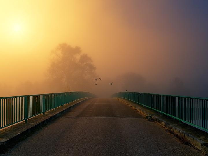 Brücke mit Vögeln am Morgen