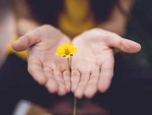 Geöffnete Hände