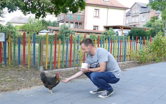Lukas Hartmann füttert im Garten des Jugendhaus St. Kilian Miltenberg ein Freizeithuhn