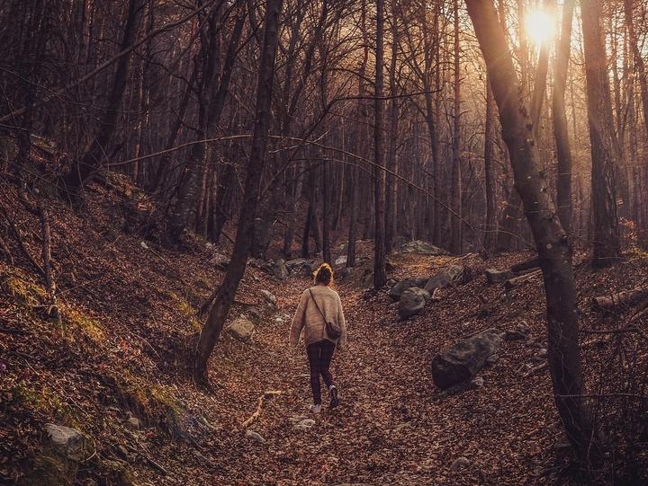 Symbolbild für Waldspaziergang: Frau zwischen Bäumen und Blättern.