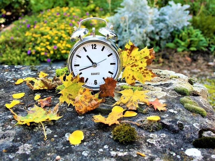 Uhr und Herbstblätter
