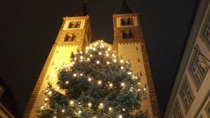 Weihnachtsbaum vor dem Würzburger Dom